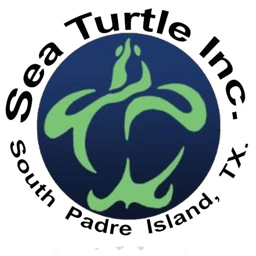 Sea Turtle, Inc. logo